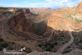 Shafer Trail Overlook