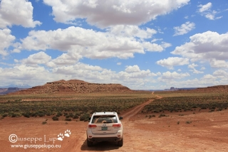 on the White Rim road