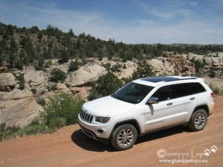 the new  Jeep V8 at the yant flat forest road