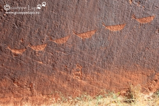 Anaszasi Petroglyphs at Colrado river near horseshoe bend